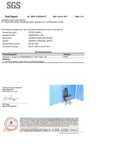 MS8007 US BIFMA Test Report