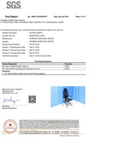 MS8005 European EN1335 Report